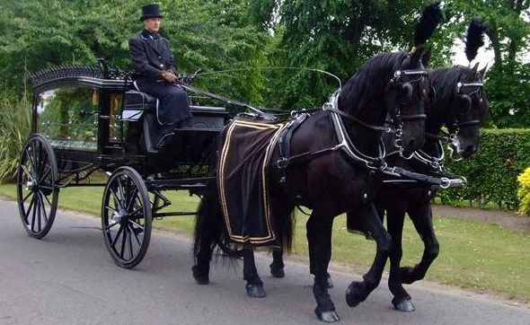 Victorian Horse Drawn Hearse